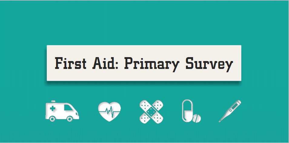 First Aid course: The Primary Survey