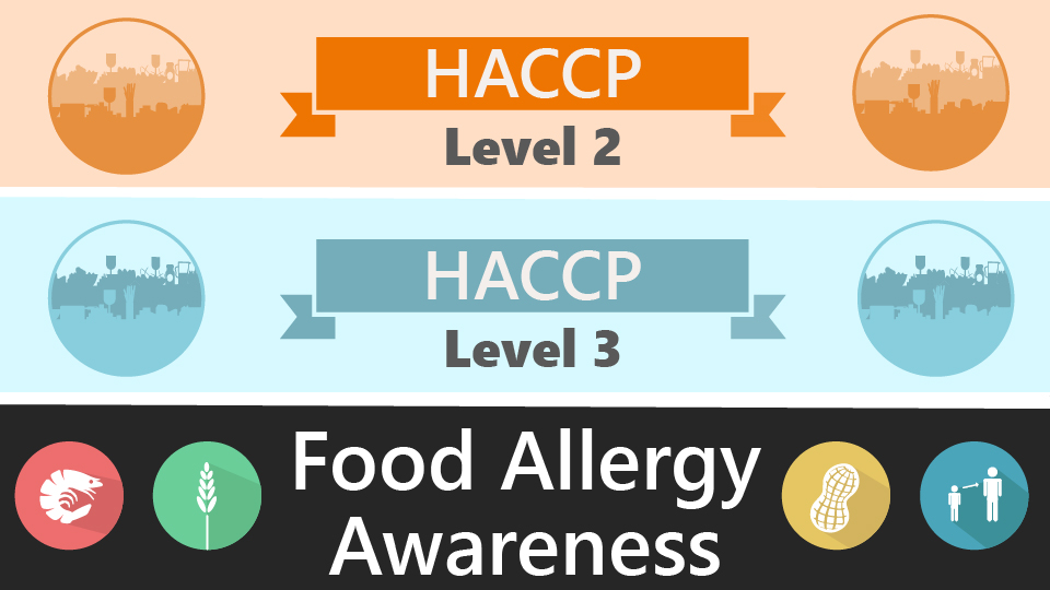 Level 2 & 3 HACCP and Allergy Training Bundle