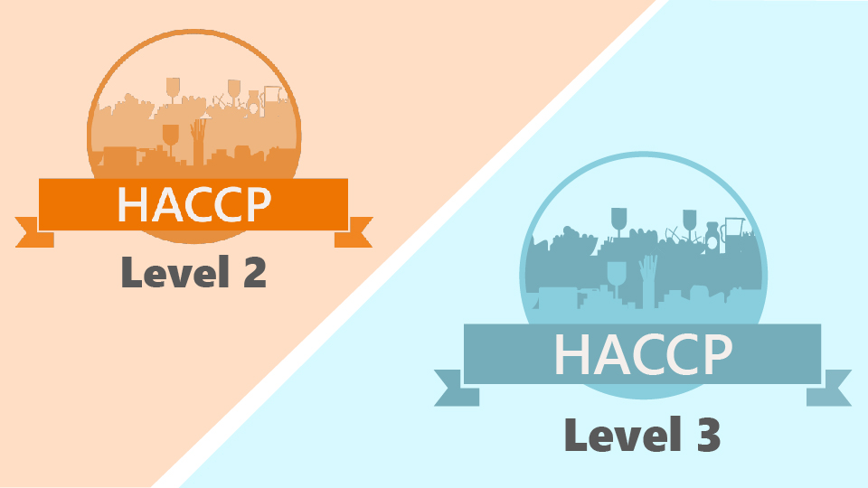 Level 2 & 3 HACCP Training Bundle