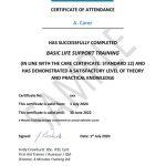 S12 certificate sample